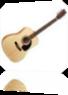 Vign_guitare_acoustique_norman_pour_site