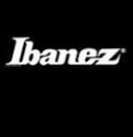 Vign_ibanez_logo_pour_site